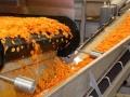 linia-produkcyjna-marchewki