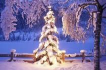 Wesołych Świąt Bożego Narodzenia 2019